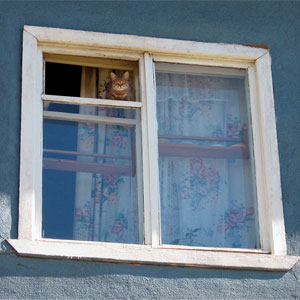 Старые-окна